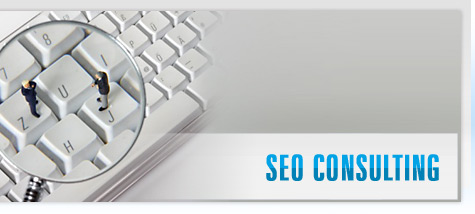 SEO consulting firm Delhi, SEO Consultant NYC, Seo Specialist India